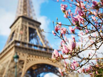 Feel Romantic Vibes on a Bike - Paris, France
